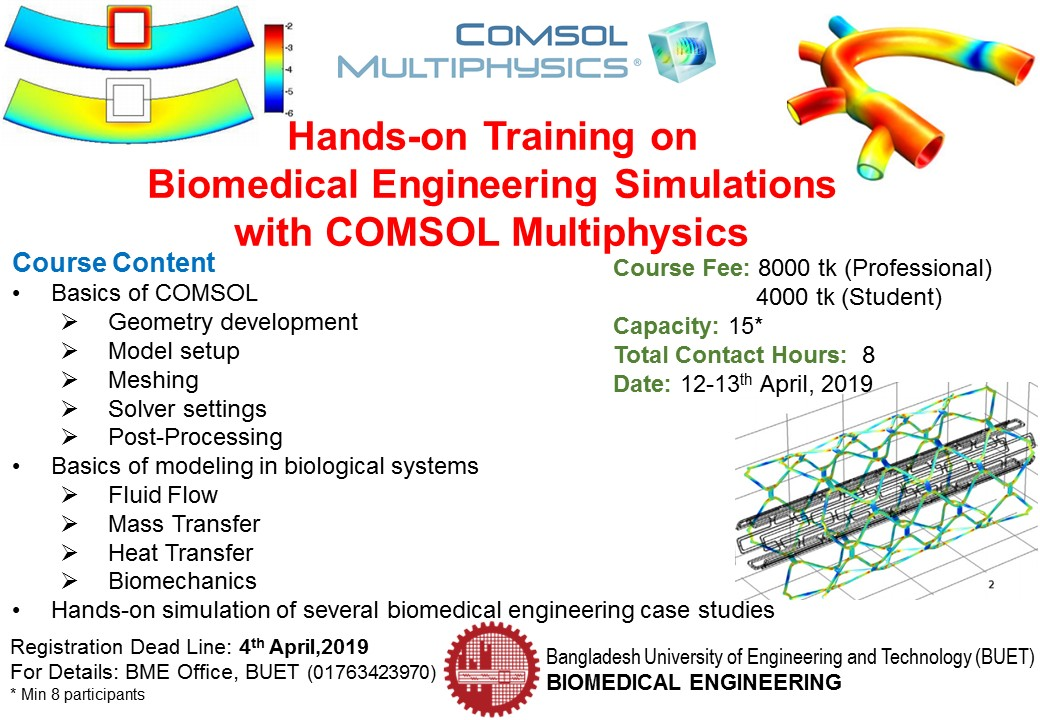 Hands-on Training on Biomedical Engineering Simulations with COMSOL Multiphysics